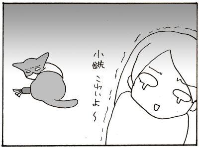 146-8.jpg