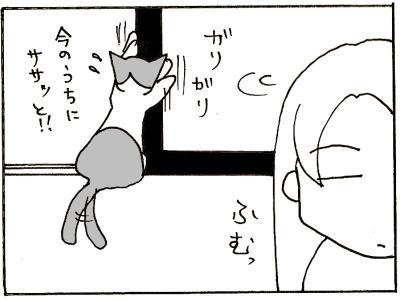 149-7.jpg