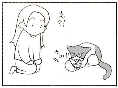 153-6.jpg