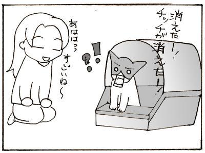 154-8.jpg