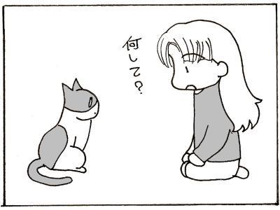 164-2.jpg