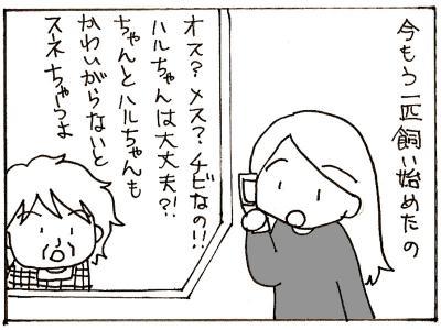 174-7-1.jpg
