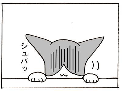 189-6.jpg