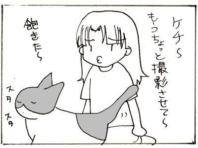 217-3.jpg