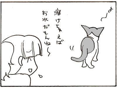 219-16.jpg