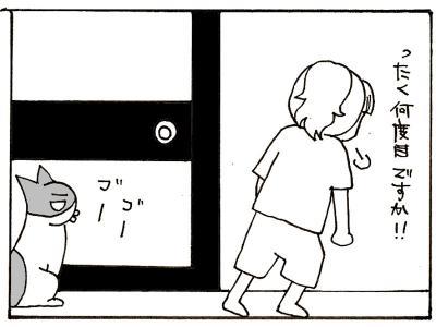 228-3.jpg