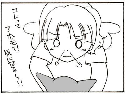 236-8.jpg