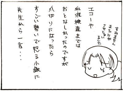 241-7.jpg