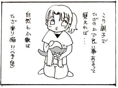 247-8.jpg