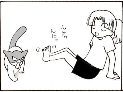 248-4.jpg