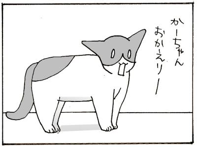 249-5.jpg