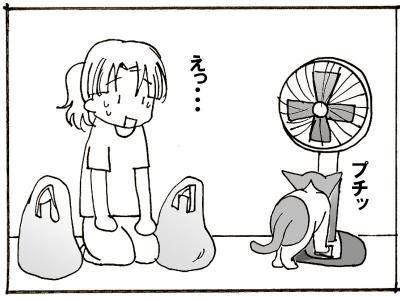 249-7.jpg