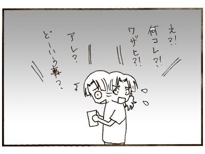 263-9.jpg