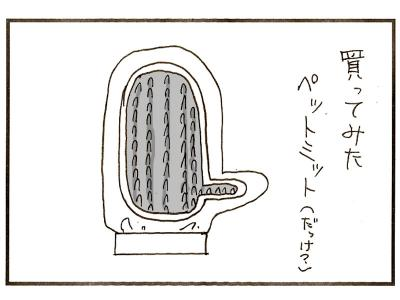 266-2.jpg