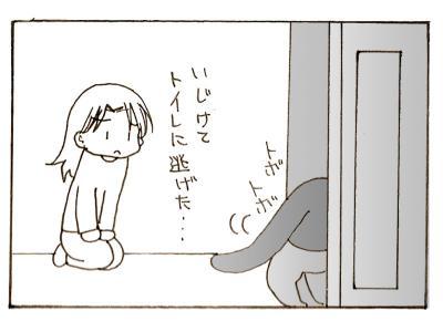 287-6.jpg