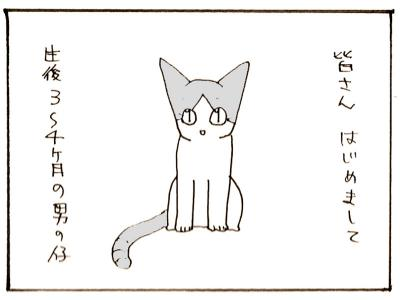 298-1.jpg
