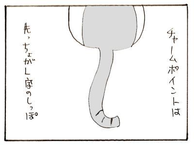 298-2.jpg