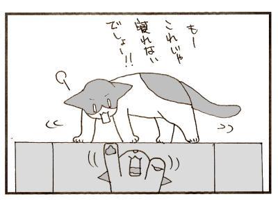 308-8.jpg