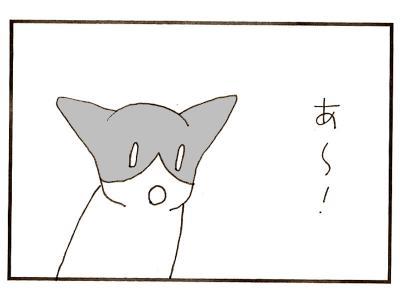 309-6.jpg