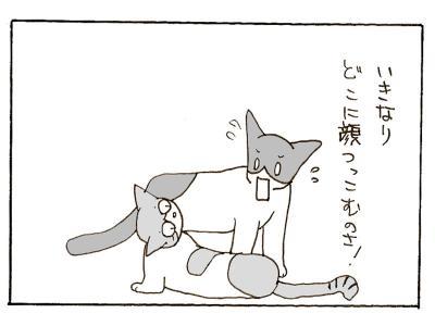 310-7.jpg