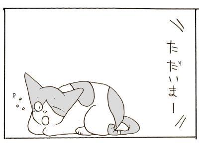 323-1.jpg