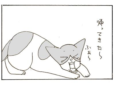 323-3.jpg