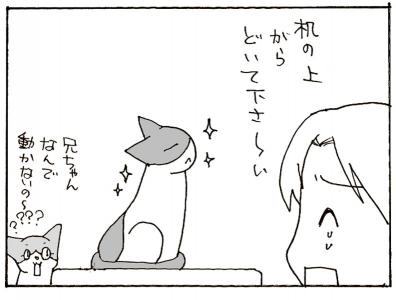 330-5.jpg