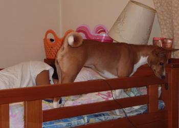ベッドの上③