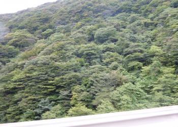 箱根の様子