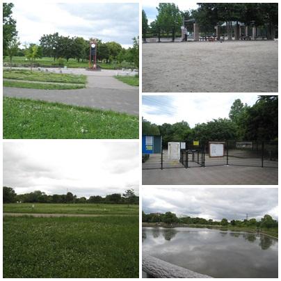 20100527.jpg