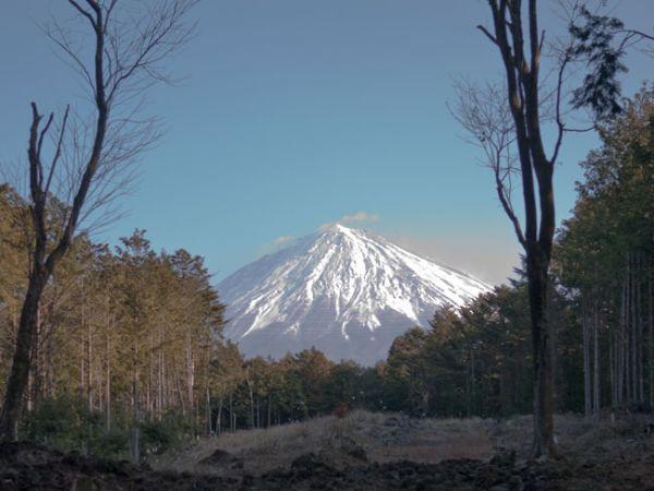 富士宮 山宮浅間神社 07