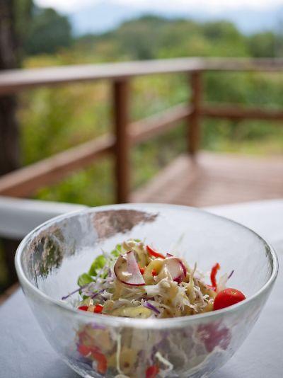 、ロプチューティーガーデン八ヶ岳店 ランチのサラダ
