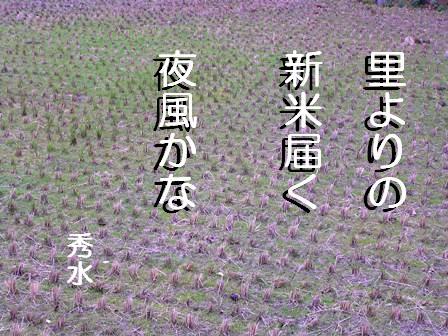 SD田句入り