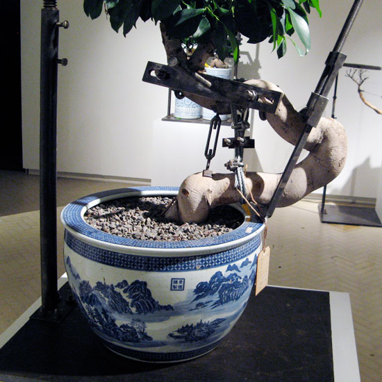 shen shaomin: bonsai series