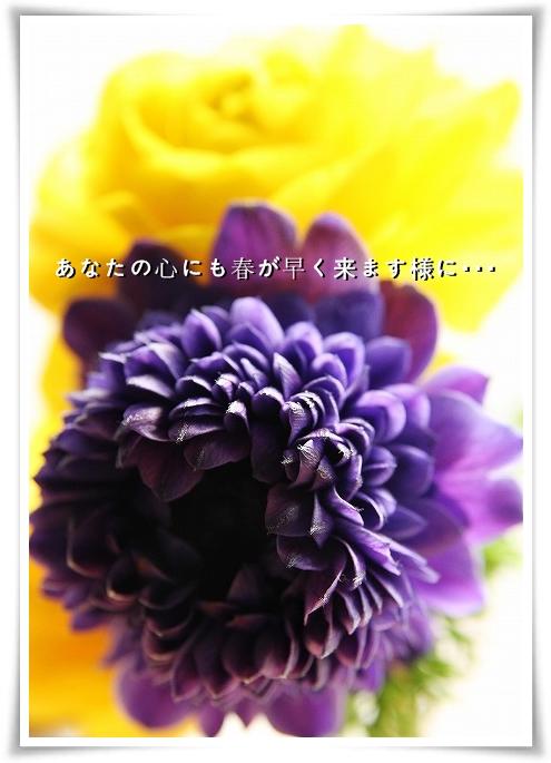 20110327_3876.jpg