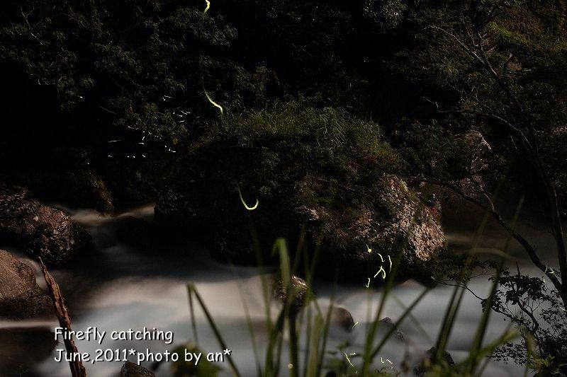 20110613_6178joaaa.jpg