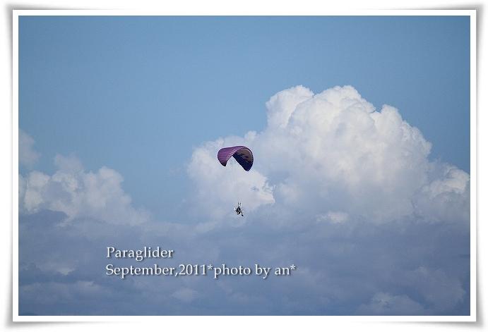 201109_8179.jpg