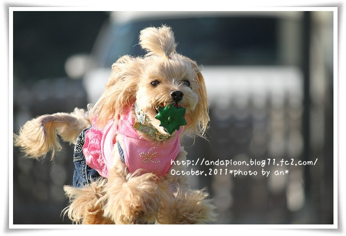 20111001_1330.jpg