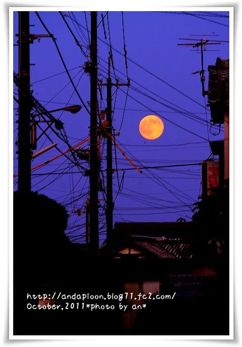 20111012_2789.jpg