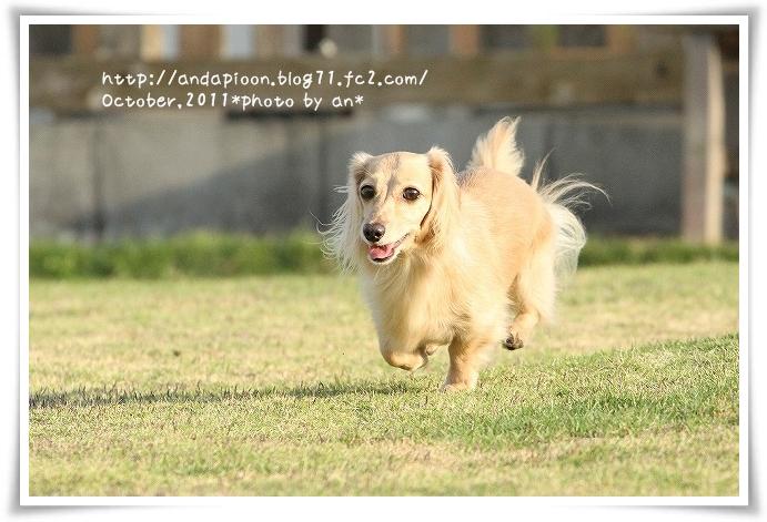 20111024_4632.jpg