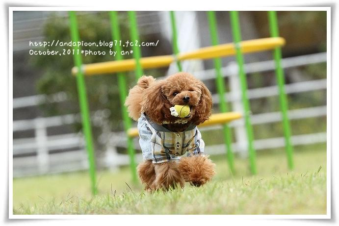 20111029_5696.jpg