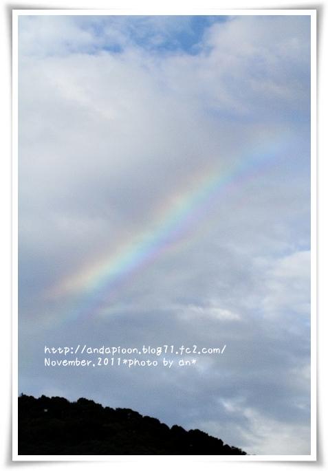 20111111_7518.jpg