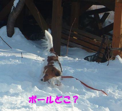年末スキー3
