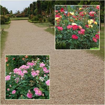 花園への道