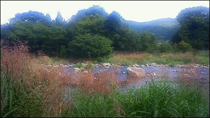 いつもの川原
