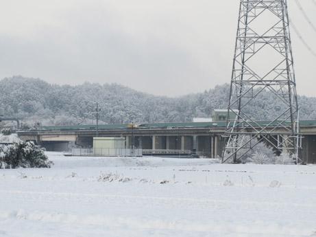 2013 2 23雪の中の散歩2