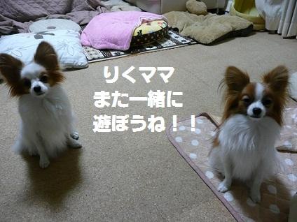 b20110324.jpg