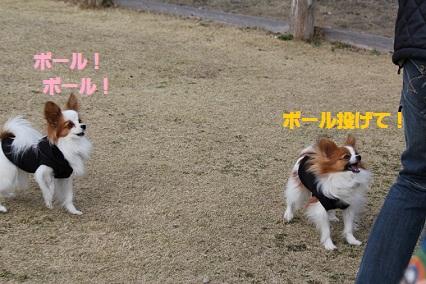 b2011032911.jpg
