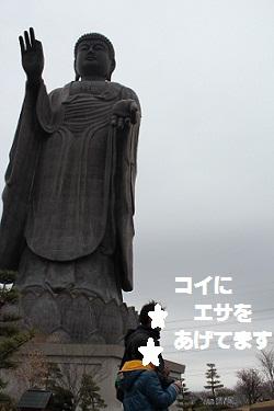 b201104076.jpg