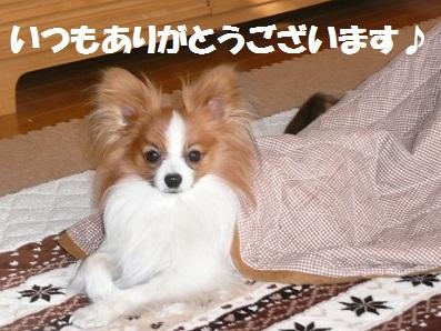 b201104181.jpg